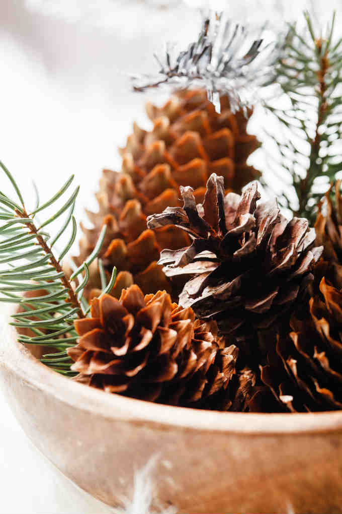 Pine Cones with Essential Oils