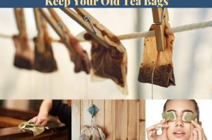 16 Genius Reasons To Keep Your Old Tea Bags
