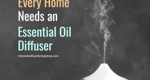 Every Home Needs an Essential Oil Diffuser