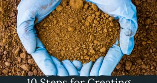 Steps for Creating Better Garden Soil