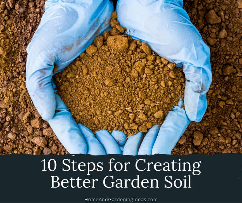 Steps for Creating Better Garden Soil