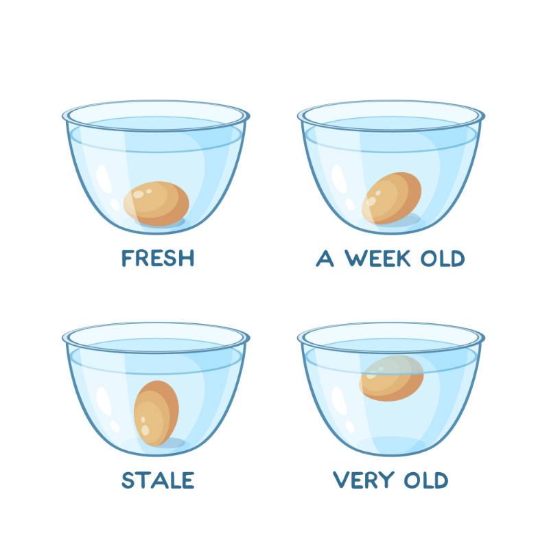 The Egg Float Test