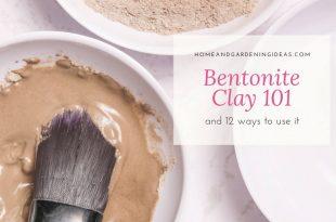 Bentonite Clay 101