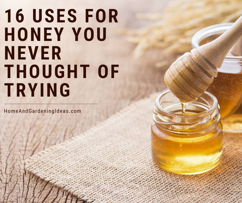 16 Uses for Honey You Never Thought Of Trying