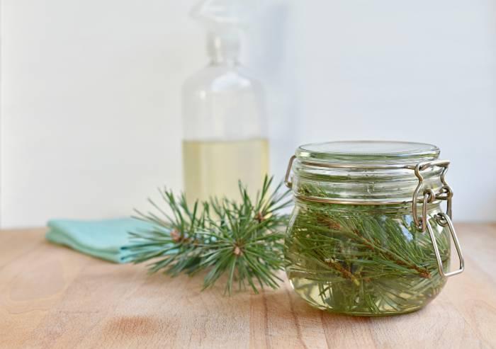 Pine Scented Vinegar